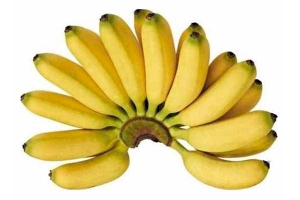 กล้วยไข่ ผักผลไม้เพื่อความสวยงามของผู้หญิง
