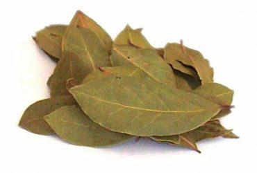 ใบกระวาน (Bay Leaves)